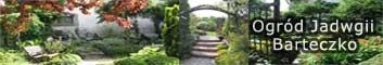 Wirtualny spacer po ogrodzie Jadwigi